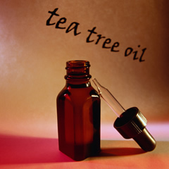 is tea tree oil effective in controlling Queensland academies for science, mathematics and technology international baccalaureate diploma program extended essay in biology is tea-tree oil effective in controlling and minimising the.